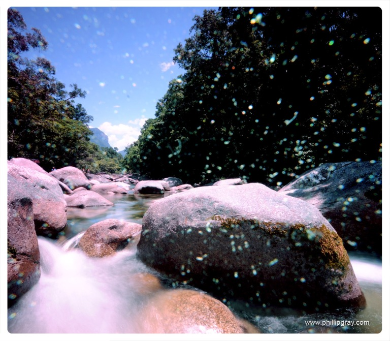 Queensland - Mossman Gorge 1
