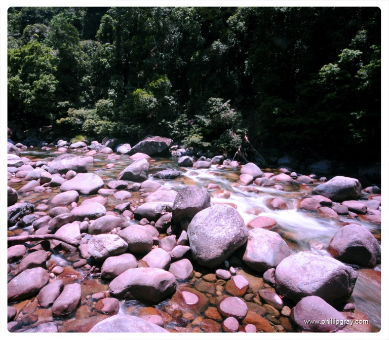 Queensland - Mossman Gorge 3