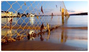 Sydney - Manly West Esplanade 1