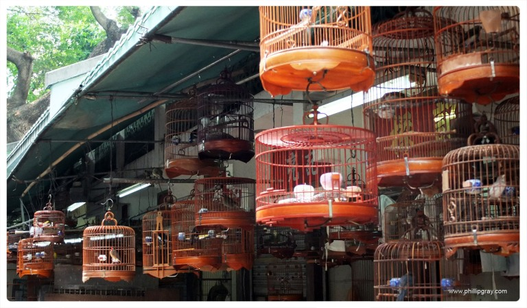 Hong Kong - Bird Market 2