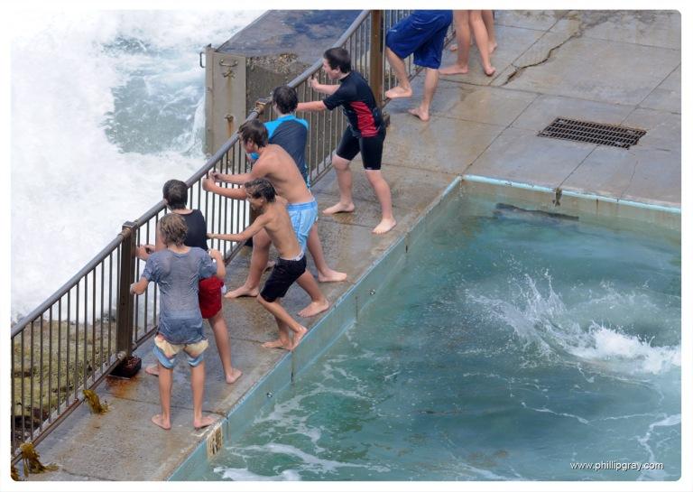 Sydney - Queenscliff Pool8a