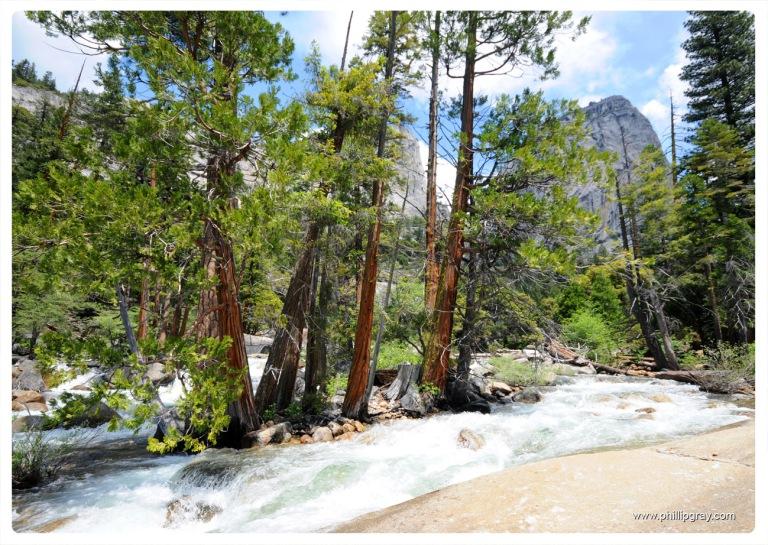 USA - CA - Yosemite 12