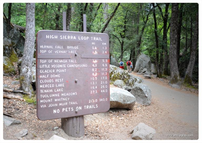 USA - CA - Yosemite 21