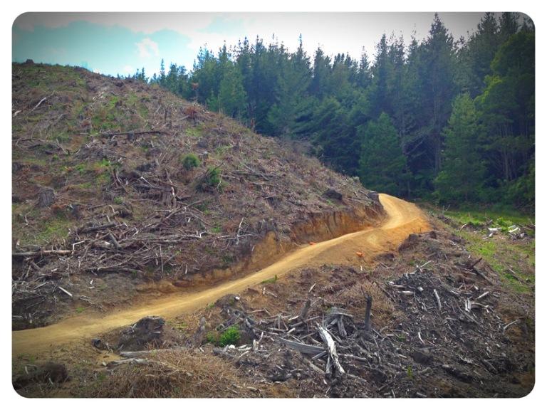 NZ - Rotorua MTB 2