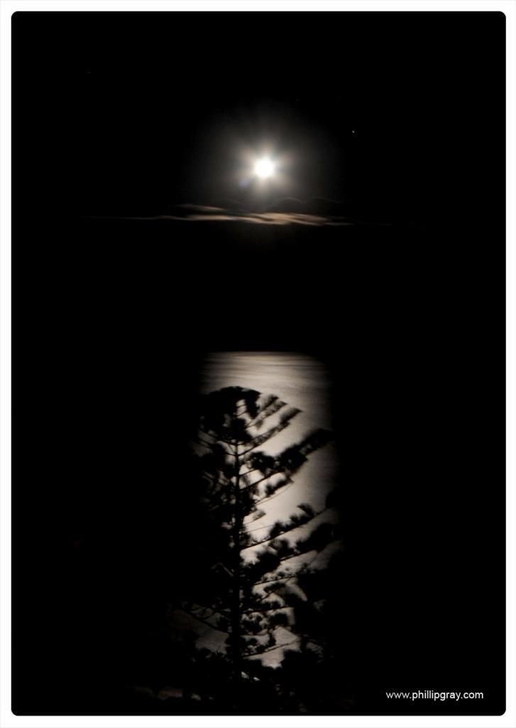 Sydney - Manly Moonrise4